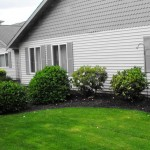 Professionally maintained gardens offer year-round enjoyment.